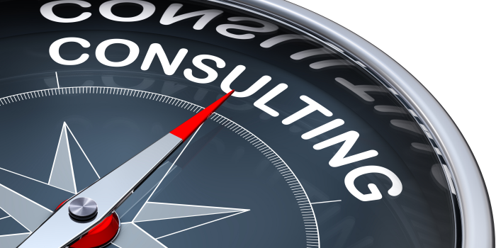 Your Consultant or Advisor Project Scoping and Planning