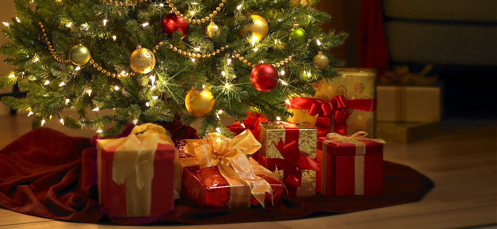 Gifts Under Tree Before Christmas